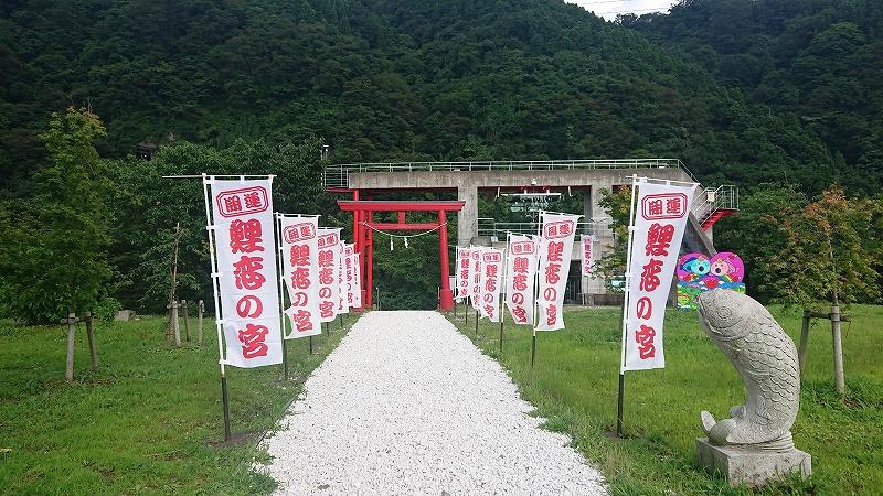 吊り橋効果で恋愛成就!庄川を眺める恋人の聖地【鯉恋の宮】に行ってみた